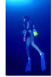 台湾ダイビングのことなら青山の台湾ダイビング倶楽部〔フォルモサ〕TOPpage